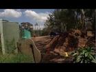 Productive Dryland School Garden in Australia