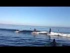 Odegaard Surfing 2