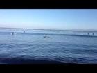 Odegaard Surfing 4