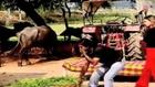Is Bhari Duniya Mein Koi Hamara Na Hua Full Song - Sonu Nigam Hit Old Songs